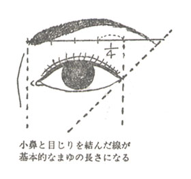 foun_Aまゆ